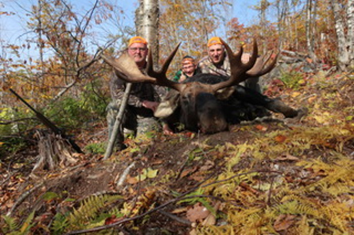 Hunters with moose